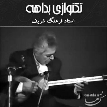 بداهه نوازی تار استاد فرهنگ شریف در مراسم گرامیداشت فریدون حافظی